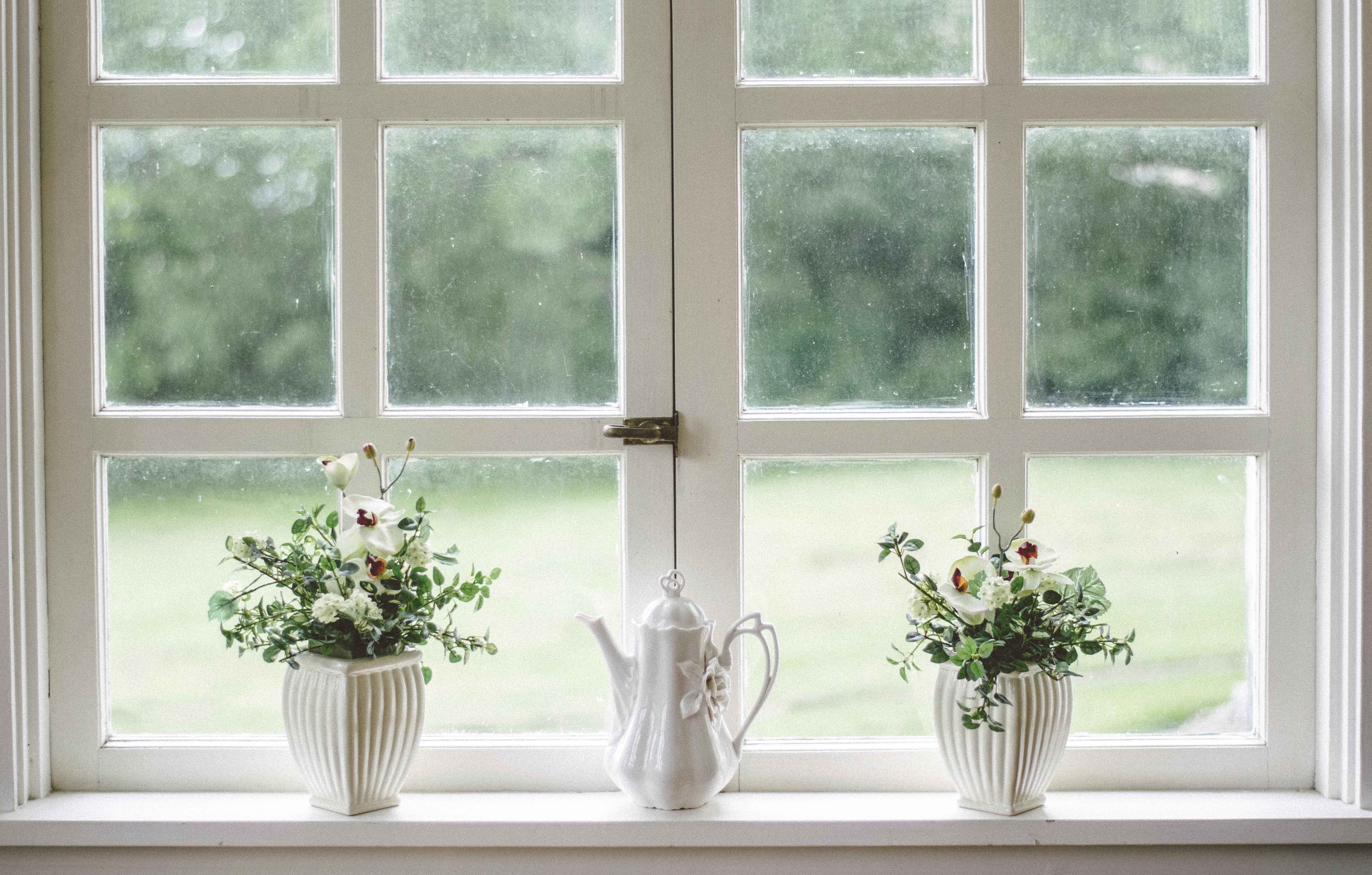 Fenêtre blanche avec pots de fleurs